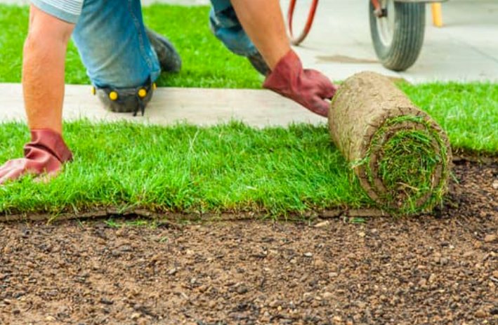 this image shows sod lawn service in Chino Hills, California