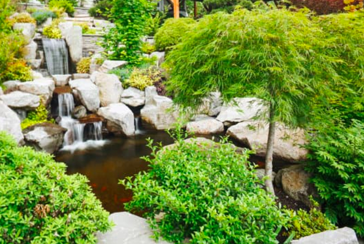 this image shows landscaping service in Chino Hills, California